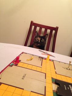 Indy. Tortie Cat, playing cluedo :) Tortoiseshell