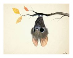 Little Bat 8x10 print on felted paper by PentwaterPaper on Etsy