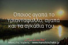 Αγάπα τον Εαυτό σου και Ζήσε με Πάθος! - www.manolisischakis.gr 365 Quotes, Smart Quotes, Love Quotes, Greek Quotes, Self Improvement, Relationship Quotes, Favorite Quotes, Meant To Be, Messages