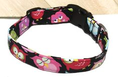 Colorful Owl Collar With Black Background For Dogs & Cats/ Hoot Owl Adjustable Collar With Buckle Or Martingale Style/ Leash Upgrade by KVSPetAccessories on Etsy