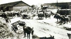 Estação Ferroviária de Monte Alto / SP - Pátio de carga e descarga nos anos 1930/1940