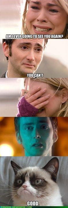 10th Doctor/Rose Tyler good bye and Grumpy Cat <== nooooooooooooo!!!!