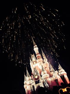 Disney World! Where dreams come true! ❤️ and memories are made ✨