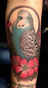 budgie tattoo - Google Search
