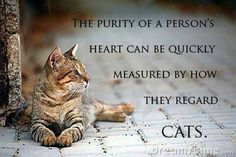 The purity of a person's heart can be quickly measured by how they regard cats