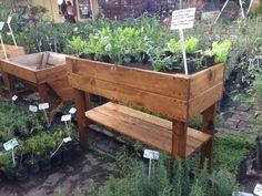 Huerta Organica Mundo Garden en dos tablas de alto : Floreros y maceteros de Mundo Garden