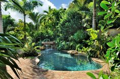 landscaping tropical design