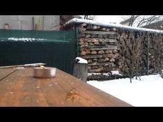 To je pecka! :: Tvořivé pracky