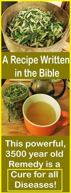 A Recipe Written in The Bible - This 3500 Years Old Remedy is A Cure For All Diseases!