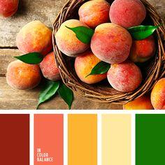 вишневый, желтый, зеленый, кораллово-красный, красный, насыщенный желтый, оттенки красного, тёмно-зелёный, теплый желтый, теплый оранжевый, цвет зелени, цвет персика, яркий желтый.