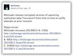 torrentwikileaksinsurancefilescreenshot