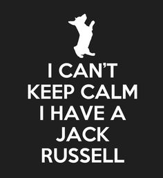 Limited-Edition 'I have a Jack Russell' Tee - Fabrily love dog