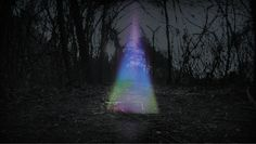 Using Glitch Art Techniques To Create Spirit-like Auras In Nature | The Creators Project