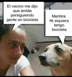 Cute Memes, Funny Memes, Memes Humor, Memes Lindos, Mexican Memes, Spanish Memes, Sleeping Dogs, Gym Humor, Motivational Words