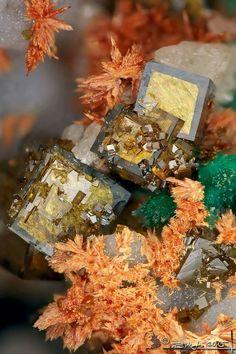 Segnitite With Malachite & Carminite | #Geology #GeologyPage #Mineral  Locality: Meleg Hill, Lovasberény, Velencei Mountains, Fejér County, Hungary  FOV: 2 mm  Photo Copyright © Stone Ásványfotós  Geology Page www.geologypage.com