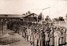 Venäläisiä sotavankeja Suomessa 1941.