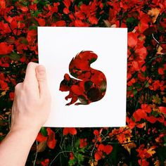 Coloring without paint? That's no problem for Nikolai Tolsty, an artist who uses colors of nature to paint his silhouettes of animals. Nikolai uses paper Land Art, Animal Cutouts, Tumblr Art, Paper Animals, Animal Silhouette, Artwork Display, Colorful Animals, Illustrations, Paper Cutting