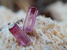 Rubellite Tourmaline anyone? These are from Cruzeiro Brazil and can be found in the shop at www.ChicagoGemShop.com! We had a big tree fall today in the backyard decided a picture session was in order.. I'm in love with the results. This photo was shot on the stump that remains the trunk ripped apart from the rest of the tree leaving this peculiar looking textured surface. #wirework #gemstonejewelry #handcraftedjewelry #cabochons #rockhound #jewelryforsale #wirewrapped #chakrahealing…