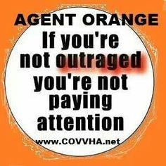 Agent Orange-Monsanto