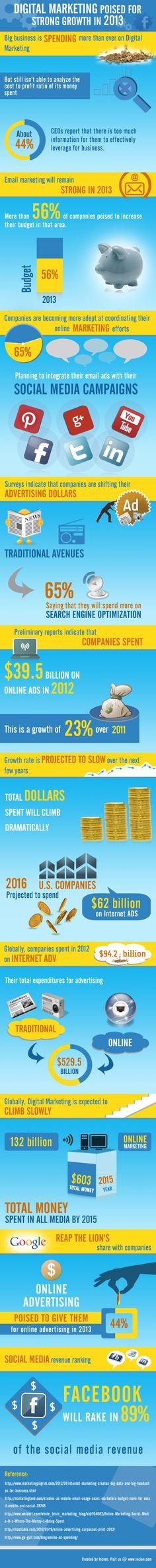 Growth of digital marketing in 2013