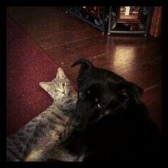 Nina& Sasha
