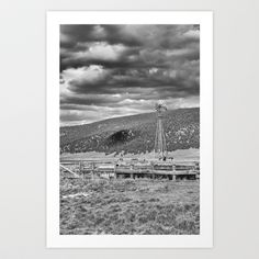 yucca at sunset in B & W Art Print by David Cutts - $17.68