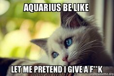 aquarius-be-like.jpg 600×403 pixels