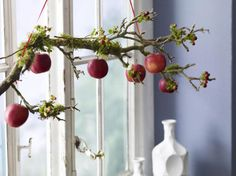 Branch decorated with apples, berries and moss from a craft store
