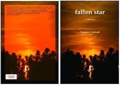 The new book - fallen star