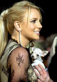 celebrities with dog
