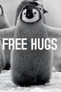 I love penguins테크노카지노테크노카지노테크노카지노테크노카지노테크노카지노테크노카지노테크노카지노테크노카지노테크노카지노테크노카지노테크노카지노테크노카지노테크노카지노