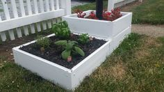 Hey, I found this really awesome Etsy listing at https://www.etsy.com/listing/263857343/handy-bed-2x2-raised-garden-bed-kit