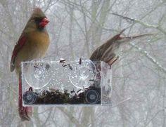 window feeder