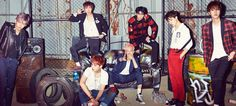 War of Hormone