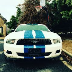 Muscle car mustang 2011