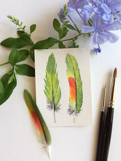 Small watercolour painting of two Australian parrot feathers (peaceful green with a dash of vibrant red) by Zoya Makarova .  ACEO/Artist Trading Card 2.5x3.5 inches