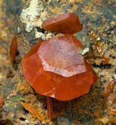 specimens/s_imagesAA9/Wulfenite-MG48AA9d.jpg