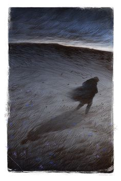Wuthering Heights for The Folio Society by Rovina Cai