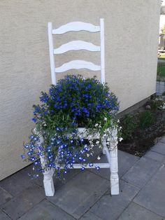 old  chair-paint casa blanka Autentico and lobelia:)