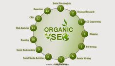 This article reveals the concept of on-page optimization and its importance in achieving organic SEO.