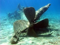 This protected area in Lake Huron contains some of the world's best-preserved shipwrecks