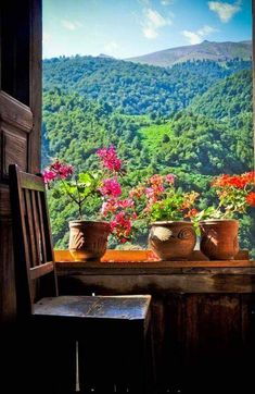 Here you relax with these backyard landscaping ideas and landscape design. Window View, Open Window, Window Ledge, Beautiful World, Beautiful Places, Beautiful Pictures, Beautiful Scenery, Looking Out The Window, Through The Window