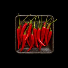 Red Hot Chili Peppers by Leszek Dudzik Fruit And Veg, Fruits And Veggies, Red Fruit, Lombok, Chile Picante, Hottest Chili Pepper, Stuffed Hot Peppers, Food Design, Food Photography