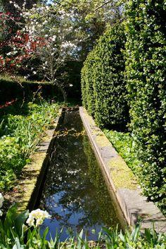Lindas trädgårdsblogg: Vatten i Anne Justs trädgård