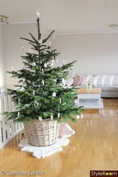Juletreet på plass i stuen <3 - album, hjemmeinnredning - StyleRoom