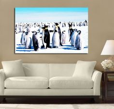Penguin Meeting Place