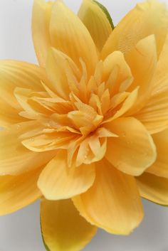 "6"" Yellow Lotus Floating Flower 12 for $28.68 / $2.39  each"