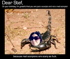 A birthday card for Stef via HAPPY BIRTHDAY STEF! LOVE, A+ AND THE INTERNET by Quinn SK