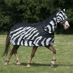 Neck Cover to complement the Bucas Buzz Off Zebra Rain Rug.