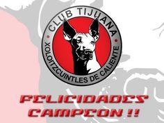 Xolos es el campeon tras vencer al Toluca